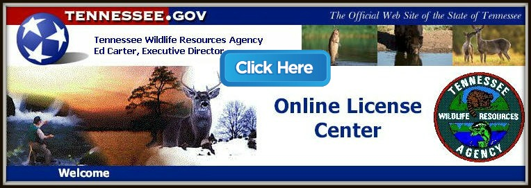 Rutrackerkk blog for Tn fishing license online
